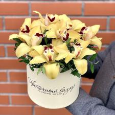 Желтые орхидеи в шляпной коробке М 1996