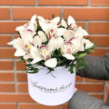 Белые орхидеи в шляпной коробке М 1998