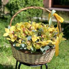 Орхидеи в корзине 2057