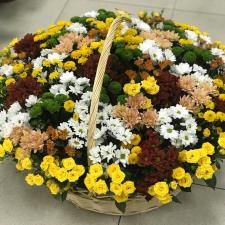 Большая корзина с хризантемами
