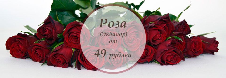 Купить розы в спб